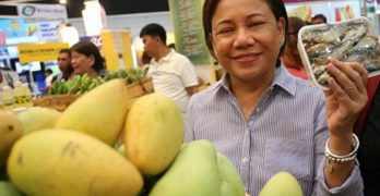 Agri-preneurship PH's sunshine industry — De Venecia