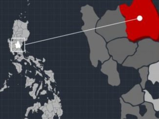 Task force to probe killing of Nueva Ecija gov's aide