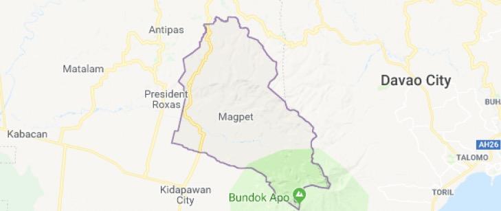 North Cotabato village chair survives ambush